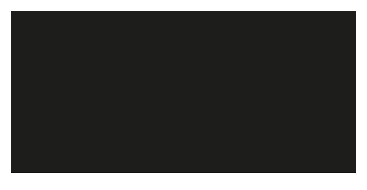 Studio GeoAss